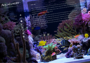 Aqua Luxury aquariums op maat